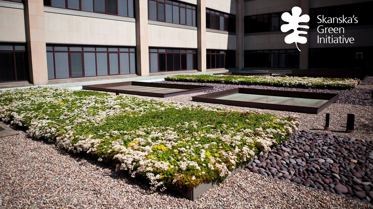 university-medical-center-green-roof